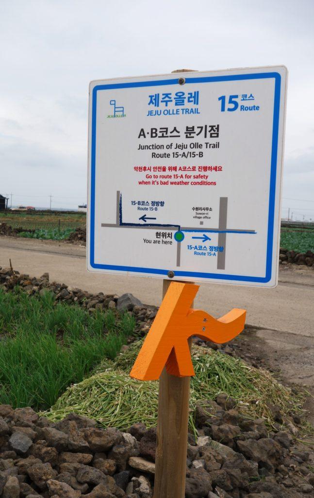 Image result for olle trail jeju track